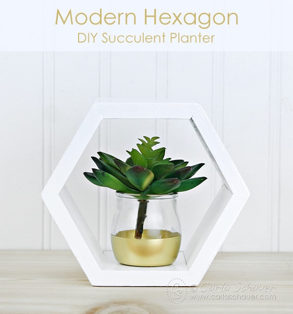 Make a modern hexagon succulent planter using this tutorial from Carla Schauer Designs